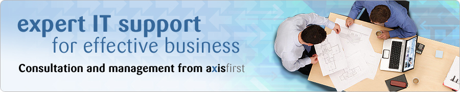 expert IT support for effective business