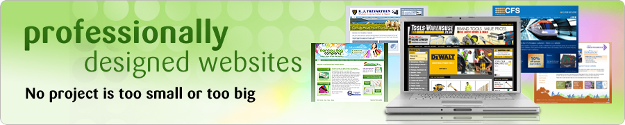professionally designed websites
