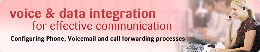 Voice and data Integration for Effective Communication